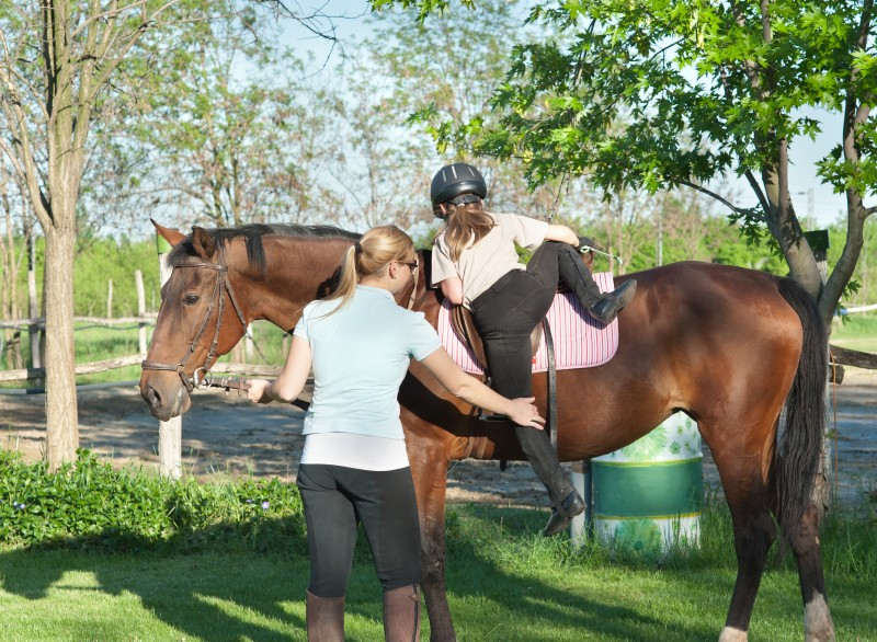 Horse Trainer or Riding Instructor? Here's Why You Need to Insure Your Services