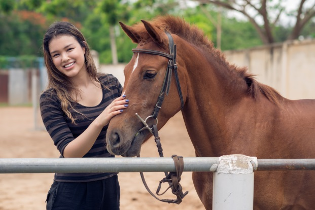 The Benefits of Investing in Horse Insurance